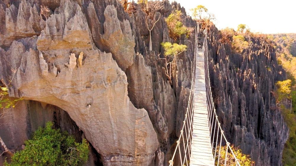 pont de singe Tsingy de Bemahara