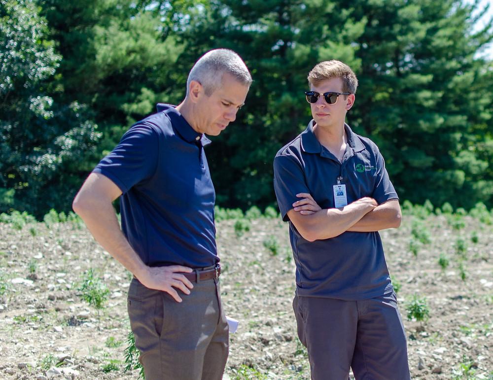 Rep Anthony Brindisi visits hemp field