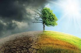 CLIMATE CHANGE AND INTERNATIONAL LAW