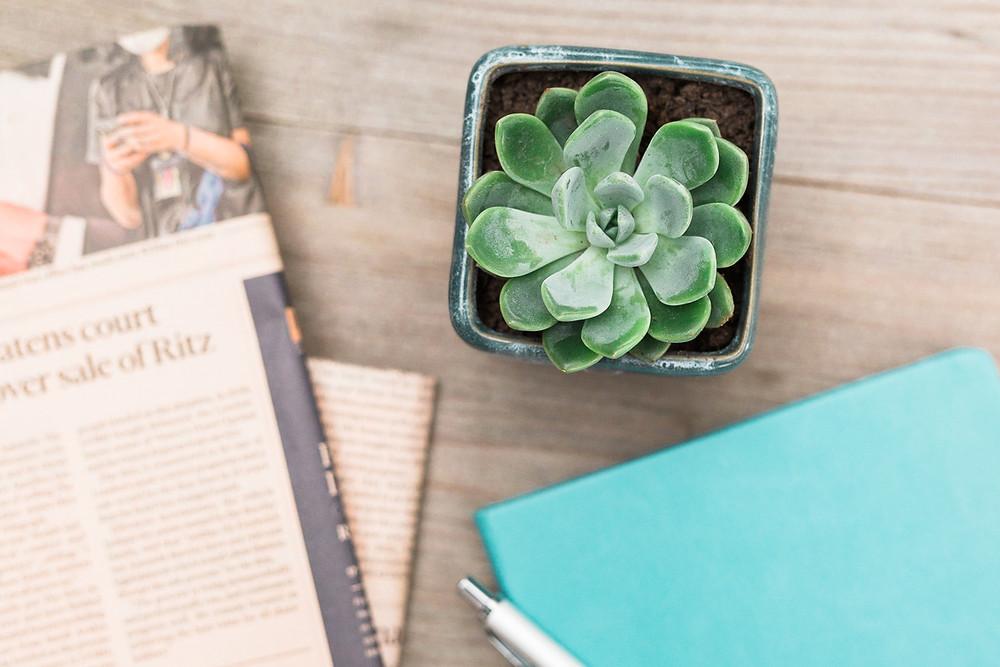 A photoshoot with Bo & Co Accountancy | Fresh Leaf Creative Brand Photographer Surrey