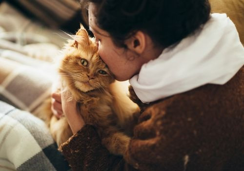 A Landlord's Ultimate Guide to Support Animals