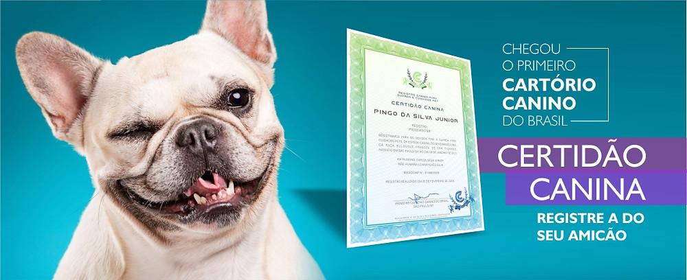 Registra a Certidão Canina no Cartório Canino