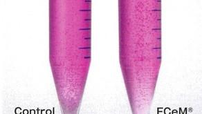 撹拌せずに細胞培養?