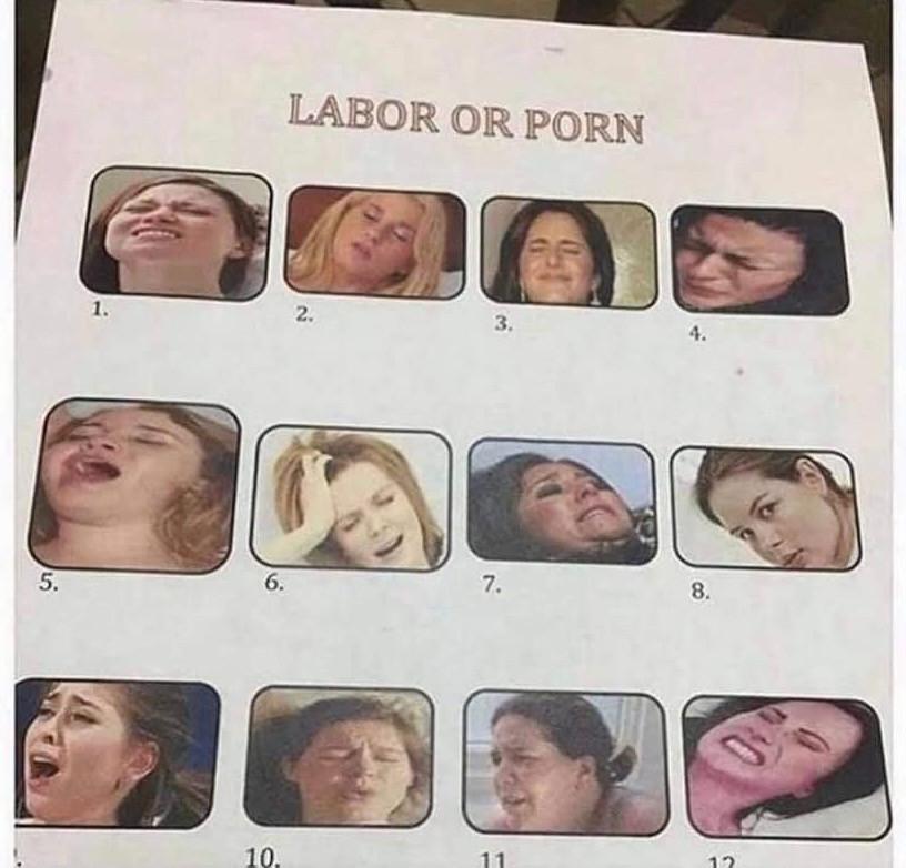 Sex Meme - Labor or Porn