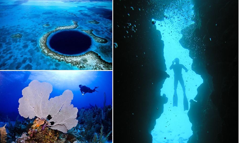 Plonger trou bleu sur la barrière de corail au Bélize
