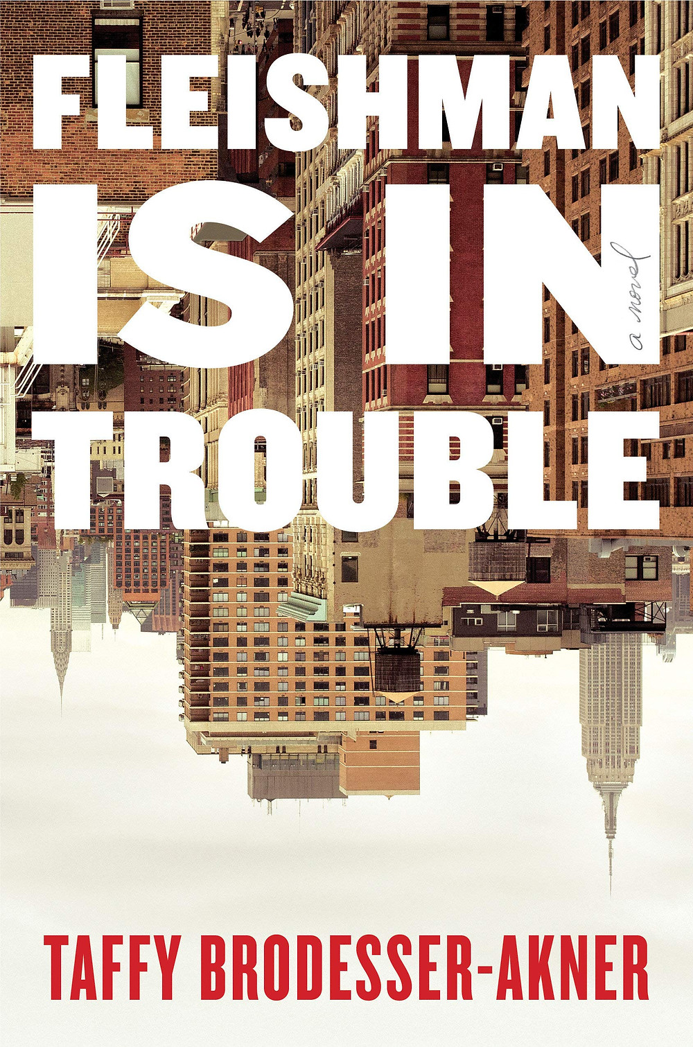 Fleishman is in Trouble by Taffy Brodesser-Akner : the book slut book reviews