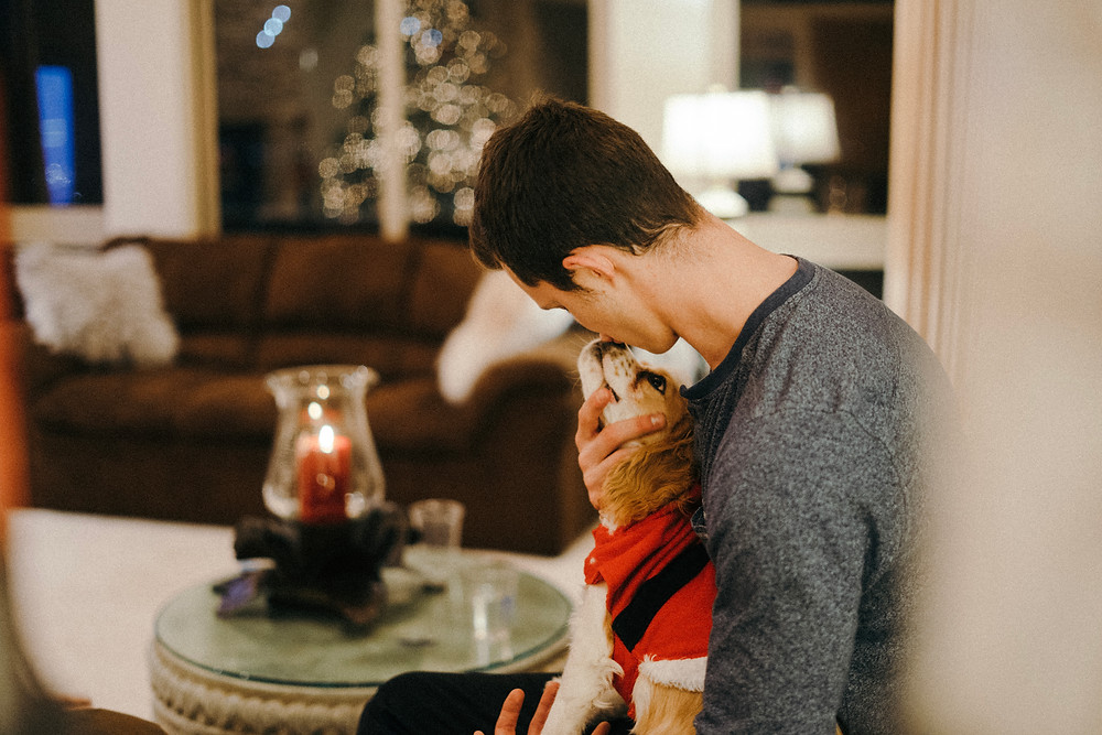 Guest loving on adorable puppy at a Christmas party