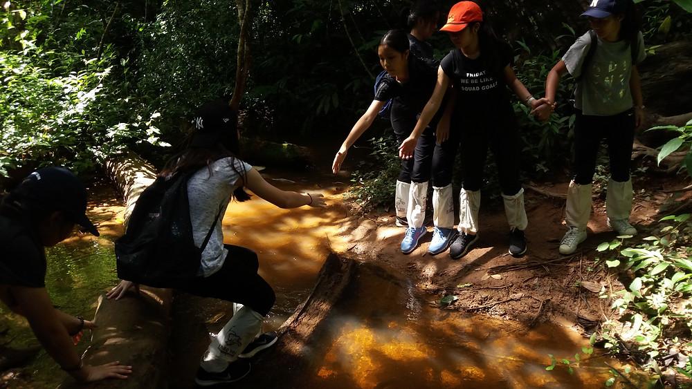Jungle Hiking for the Adventurous Journey in Thailand for the Duke of Edinburgh's International Award