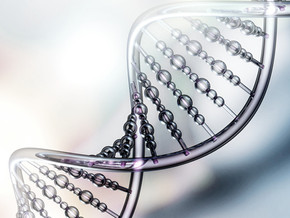 Advances in Gene Therapy Research in CMT1A