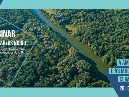 Energy transition, the Amazon region and climate change: the law on the agenda