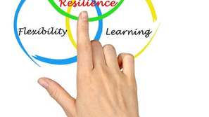 Organizational Readiness During a Crisis