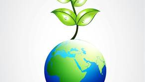 Strategic Approaches to Environmental Sustainability
