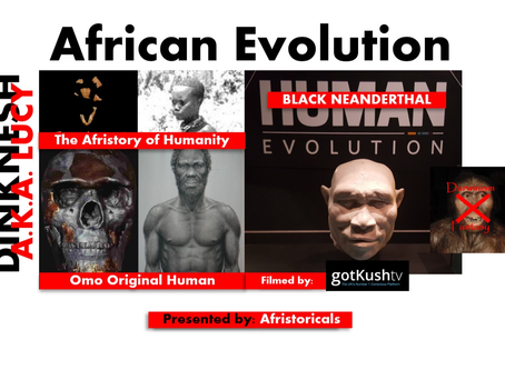 AFRICAN EVOLUTION - THE AFRISTORY OF HUMANITY!