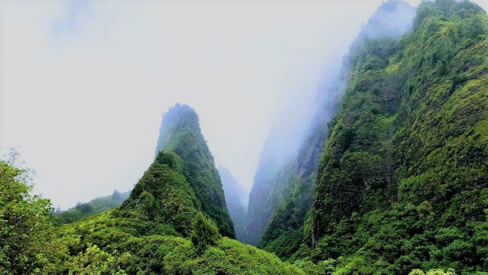 lush green forest surrounding peaks and spires of hawaii's iao valley