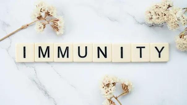 boost you immunity