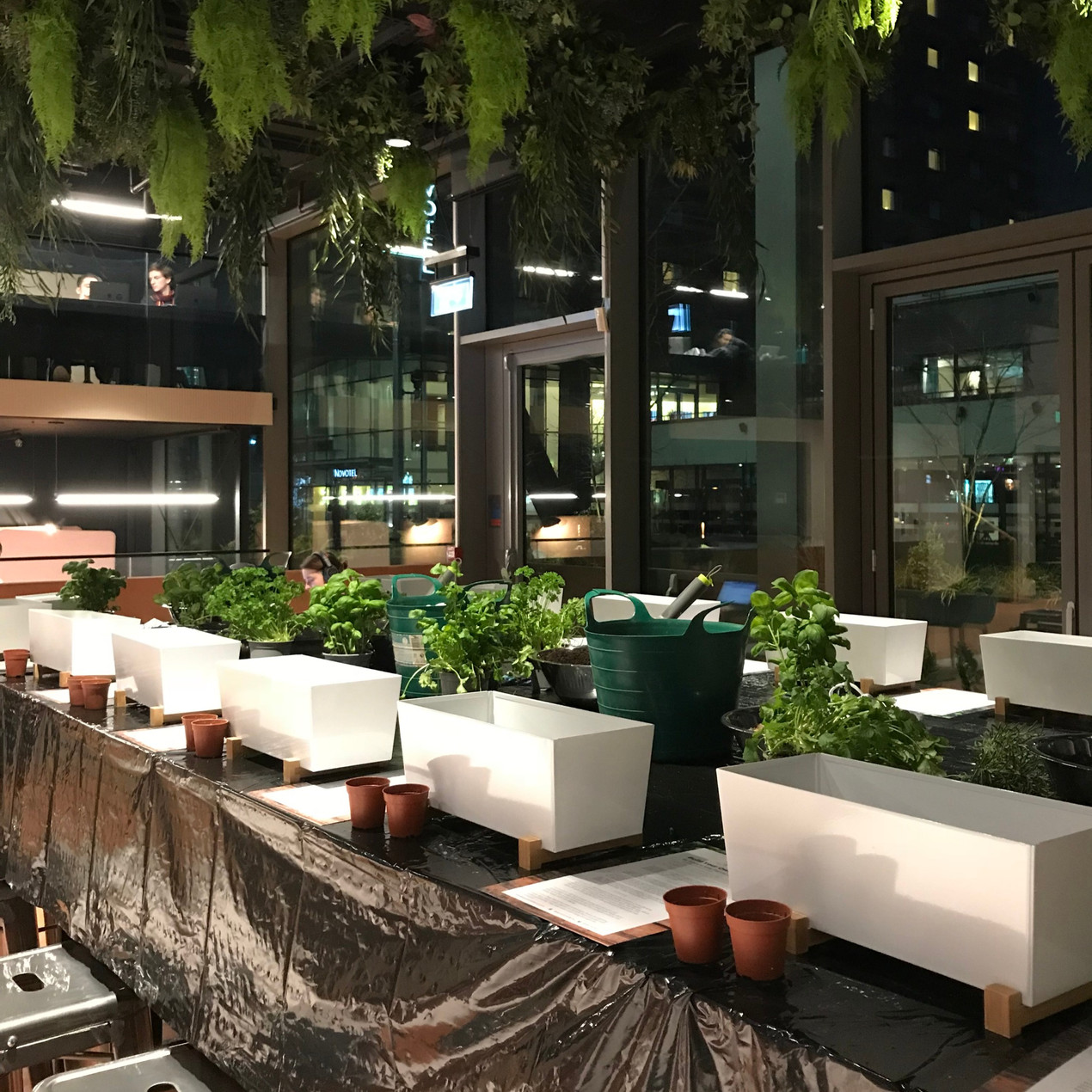 Build your own herb garden workshop for wellbeing
