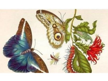 Ciencia y arte - una lectura simple para disfrutar