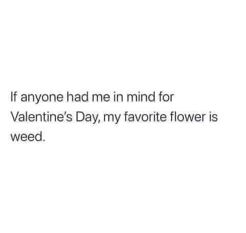 Funny Valentines Memes