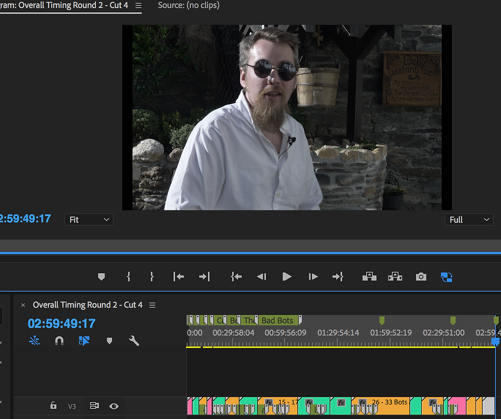 Premiere screen grab.