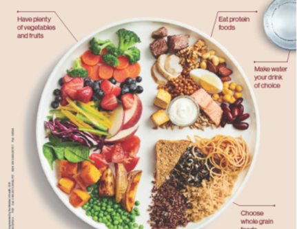 The New Canada's Food Guide