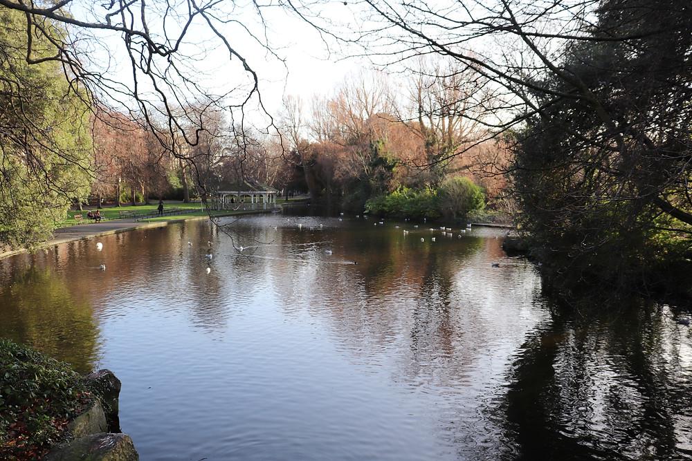 St Stephen's Green small pond in Dublin Ireland