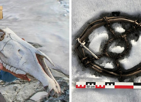 Melting Glaciers Reveal Lost Viking-era 'Highway' and 1,800-Year-Old Artifacts