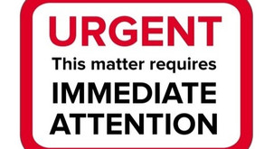 URGENT CALL - Take action to STOP Government legally committing crimes