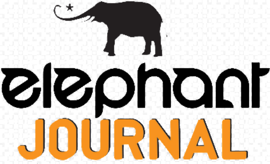 Elephant Journal- Article by professor Thalma lobel - Productivity, Working from home, Taking a break