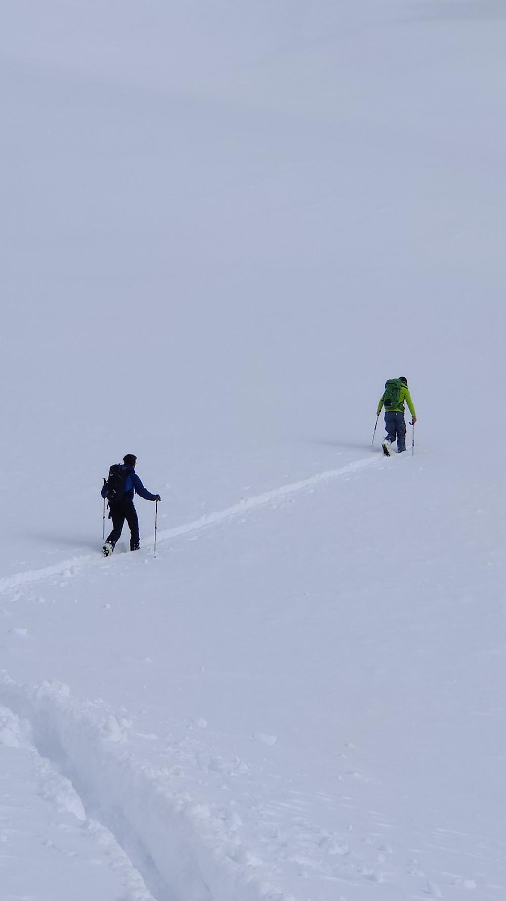 Skitouren Skitour Südtirol Ahrntal Reintal Rieserferner Hirbernock