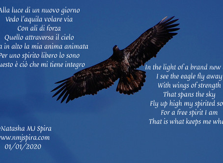 Con ali di forza... With wings of strength...