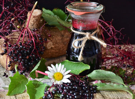 The Science of Elderberry