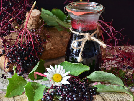 The Science of Elderberry