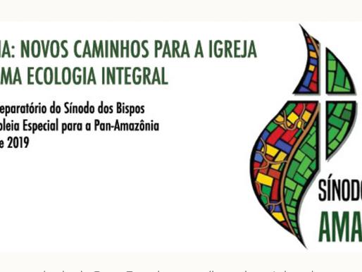 Exageros, alarmismos e escuta: o sínodo da amazônia e seu instrumentum laboris