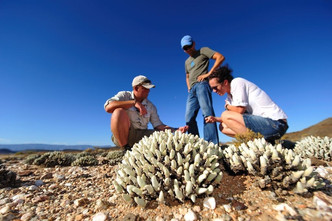 SANBONA explorer: A guided walking experience exploring the wilderness.