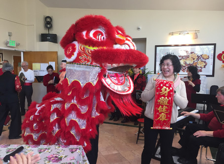 HAPPY CHINESE NEW YEAR, YEAR OF PIG!