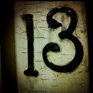 Reason #13