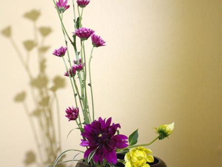 Sogetsu Ikebana Study Book4 -1With Flowers only