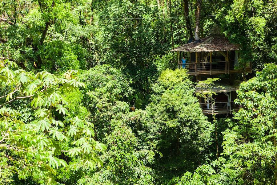 Mis Ojos treehouse at Finca Bellavista