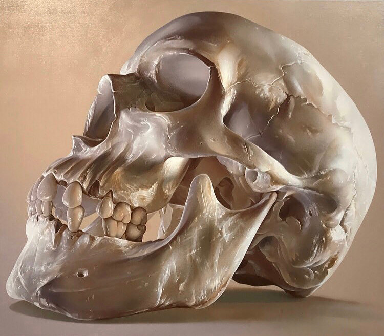 Amazing Skull by Street and Mural Artist Sam Bates aka Smug One