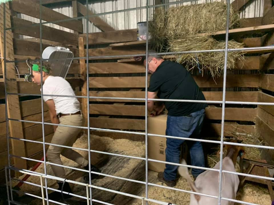 cleaning stalls and feeding animals at the harford county 4-h farm fair