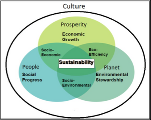 A graph showing the overlap of prosperity, people, and planet with all three joined with SUSTAINABILITY.