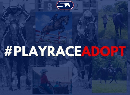 StableDuel Announces #PlayRaceAdopt Campaign