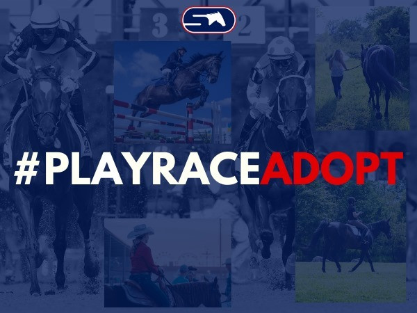StableDuel releases #PlayRaceAdopt for Off Track Thoroughbred Owners