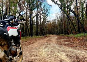 2020 NSW Trailblazer