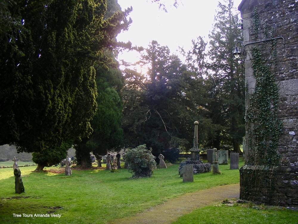 Ilam churchyard