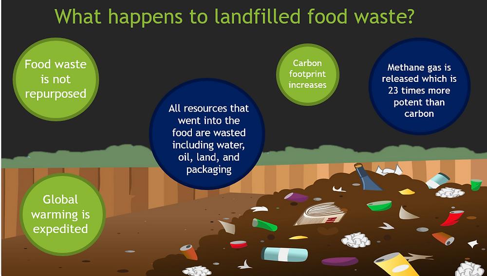 Landfilled food waste