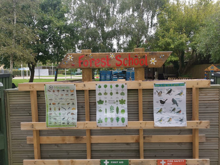 Our New Forest School