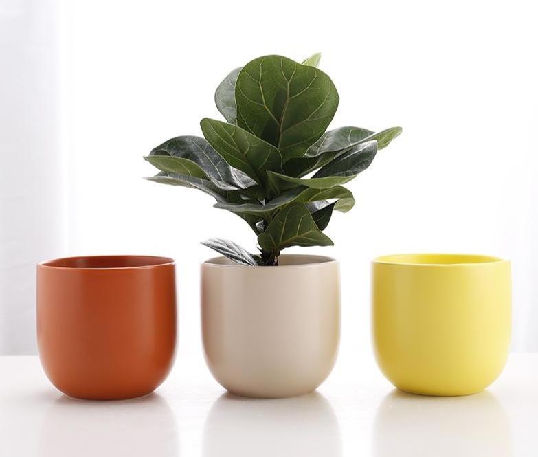 BGD - Palette Pots Image