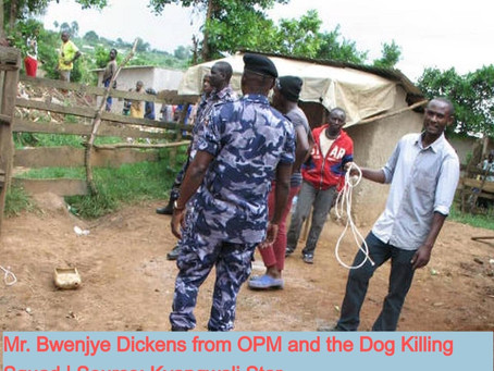 THE CONTROVERSIAL KYANGWALI DOG KILLING SQUAD TO EXTEND CONTRACT, UNABLE TO MEET THE DEADLINE