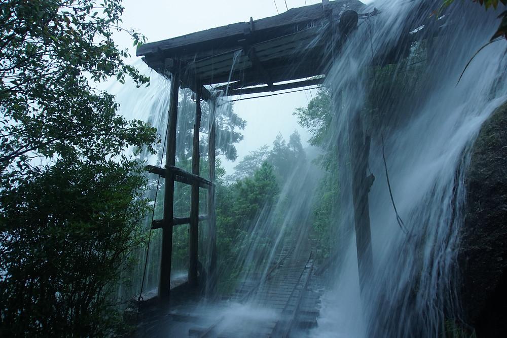 縄文杉へのトロッコ道も増水すると危険が